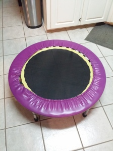 Gold's Gym Mini Trampoline